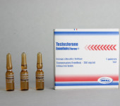 Testosteron Enanthate Norma 250mg/amp
